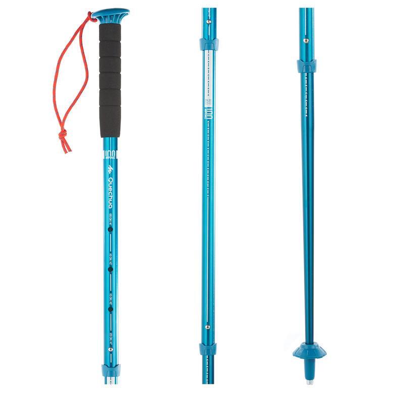 triund trek backpacking_walking-pole